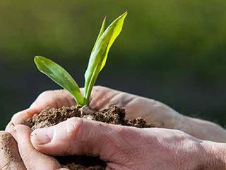Sind Sie vorbereitet auf Wachstum?